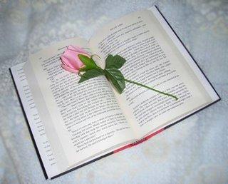flor-libro-3