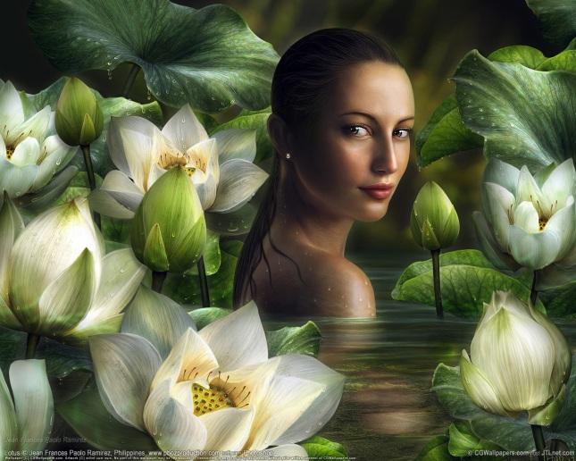 bella-flor-1280-x-1024