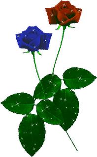 fiori_anim_16