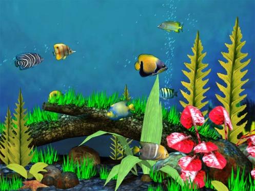 fish-aquarium-3d-01