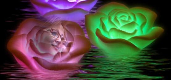 cropped-rosas-iluminadas-spa2215.png
