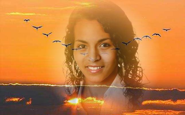 aves-volandokoria